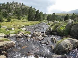 purifier eau randonnée