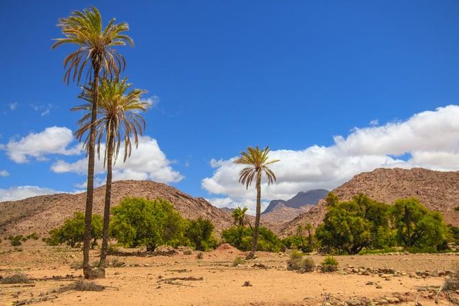 Maroc-anti-Atlas-oued